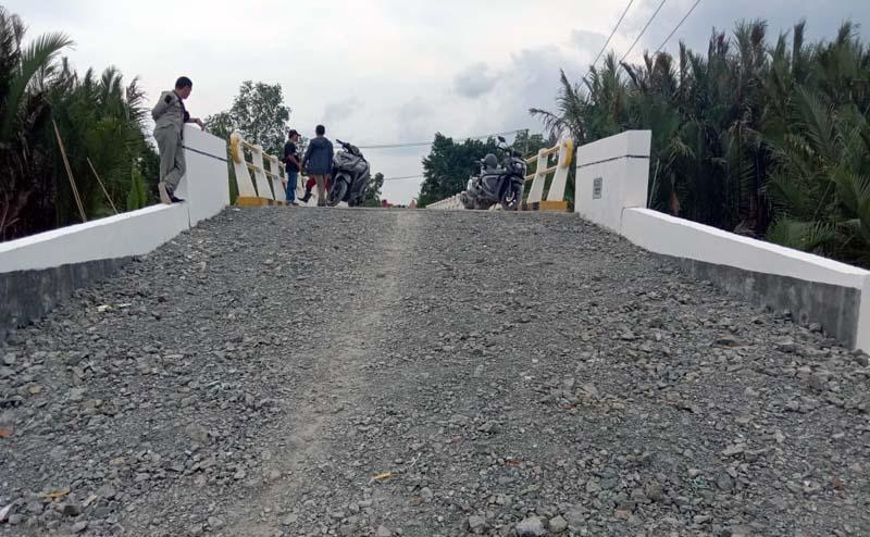 Jembatan di Parit 20 Kelurahan Tungkal V, Kecamatan Seberang kota, Kabupaten Tanjung Jabung Barat. [FOTO : JambiNET/HR]